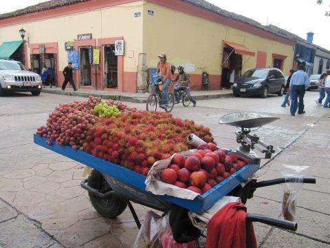 SPANSK I MEXICO