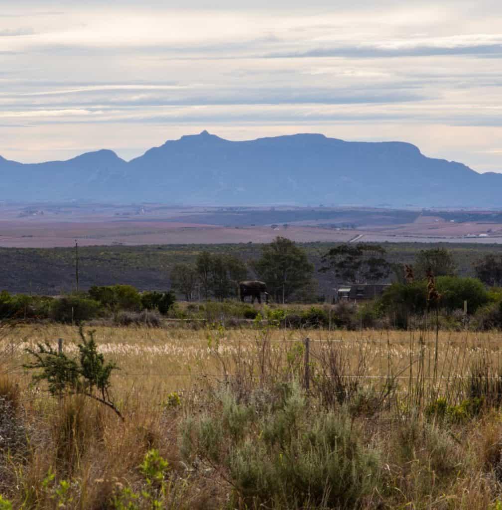 Sportscoaching rejse til Sydafrika