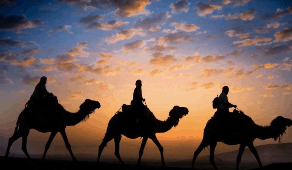 Kamelridning i Marokko