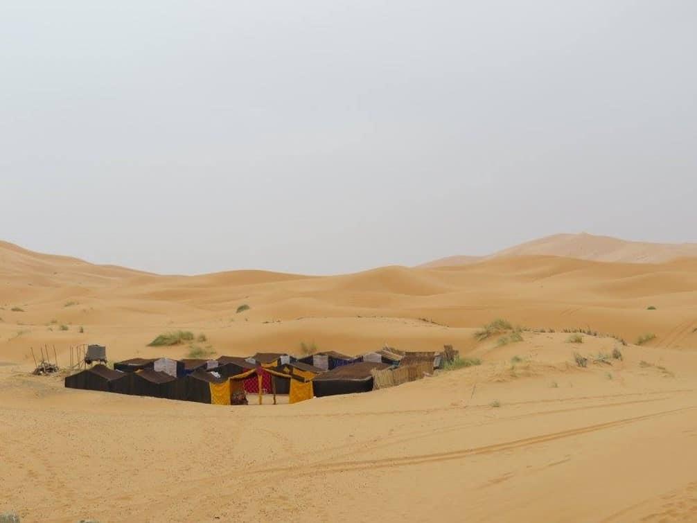 Grupperejse til ørkenen