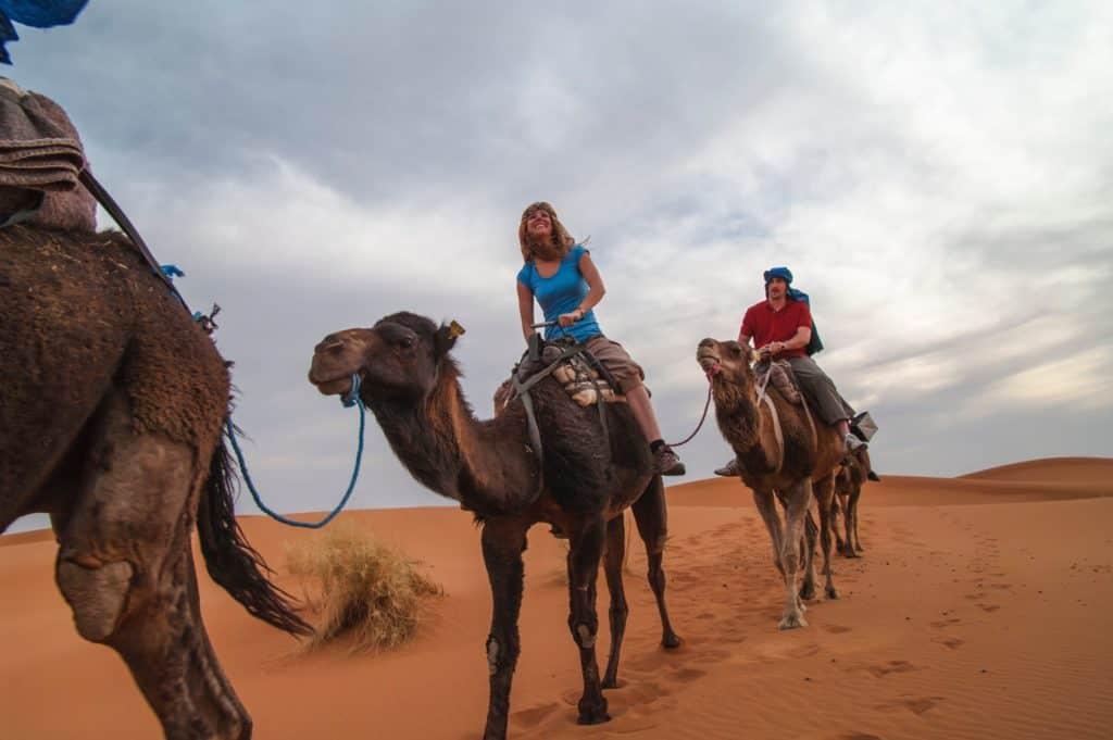 Kamelridning i ørkenen