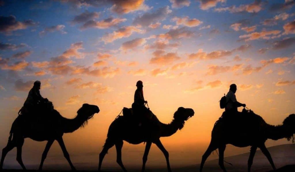 Se solnedgang på kamelryg på din rejse