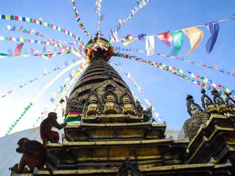 Studietur og eventyr i Nepal