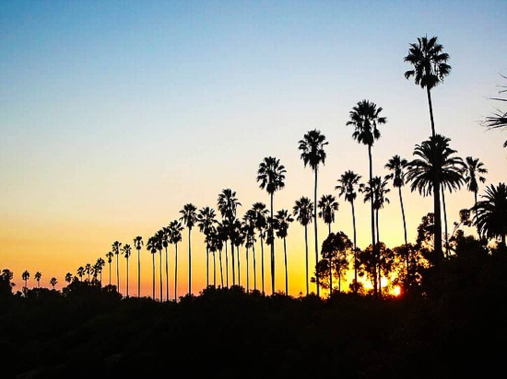 Los Angeles Boulevard